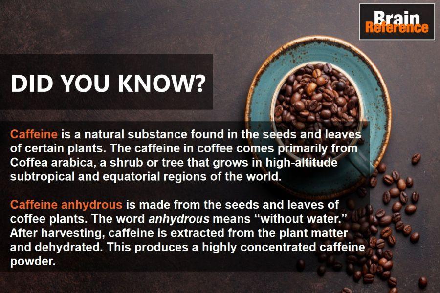ADDTabz-Gentech-Pharmaceutical-Caffeine-Anhydrous-Facts