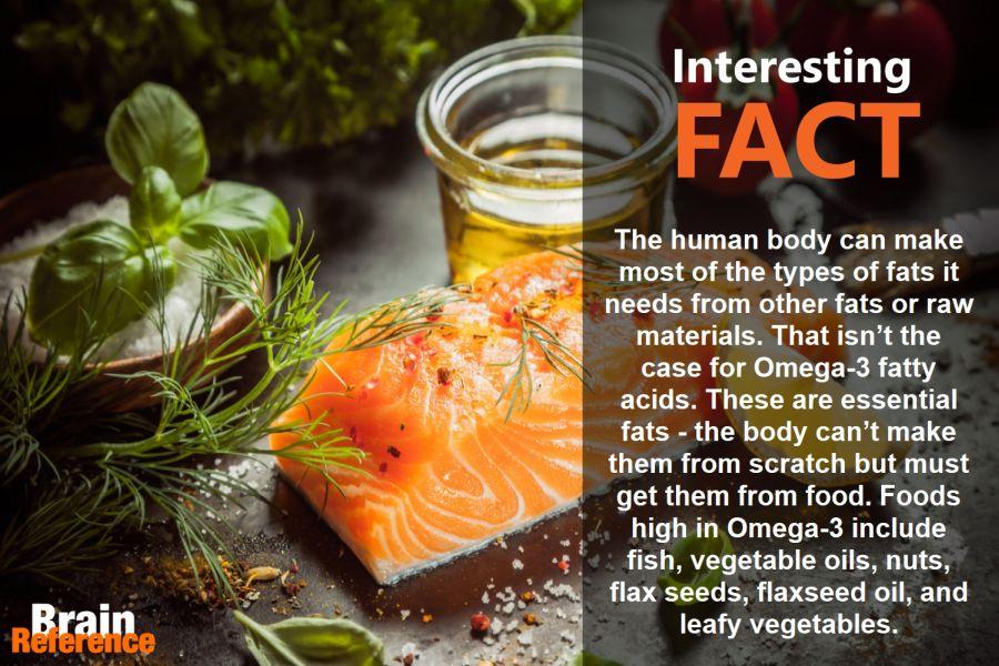 BiOmega-Usana-Omega-3-Fatty-Acids-Facts