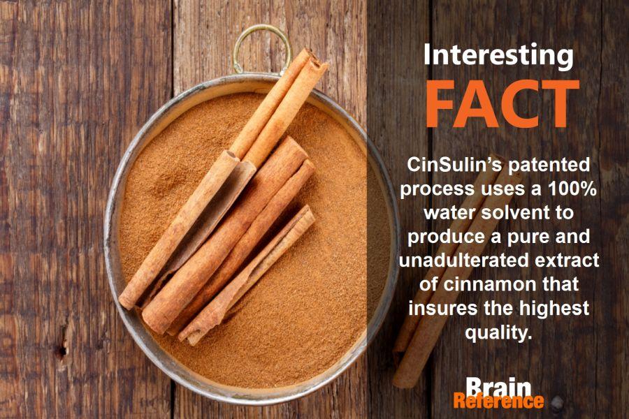 CinSulin-TruNature-Cinsulin-Facts