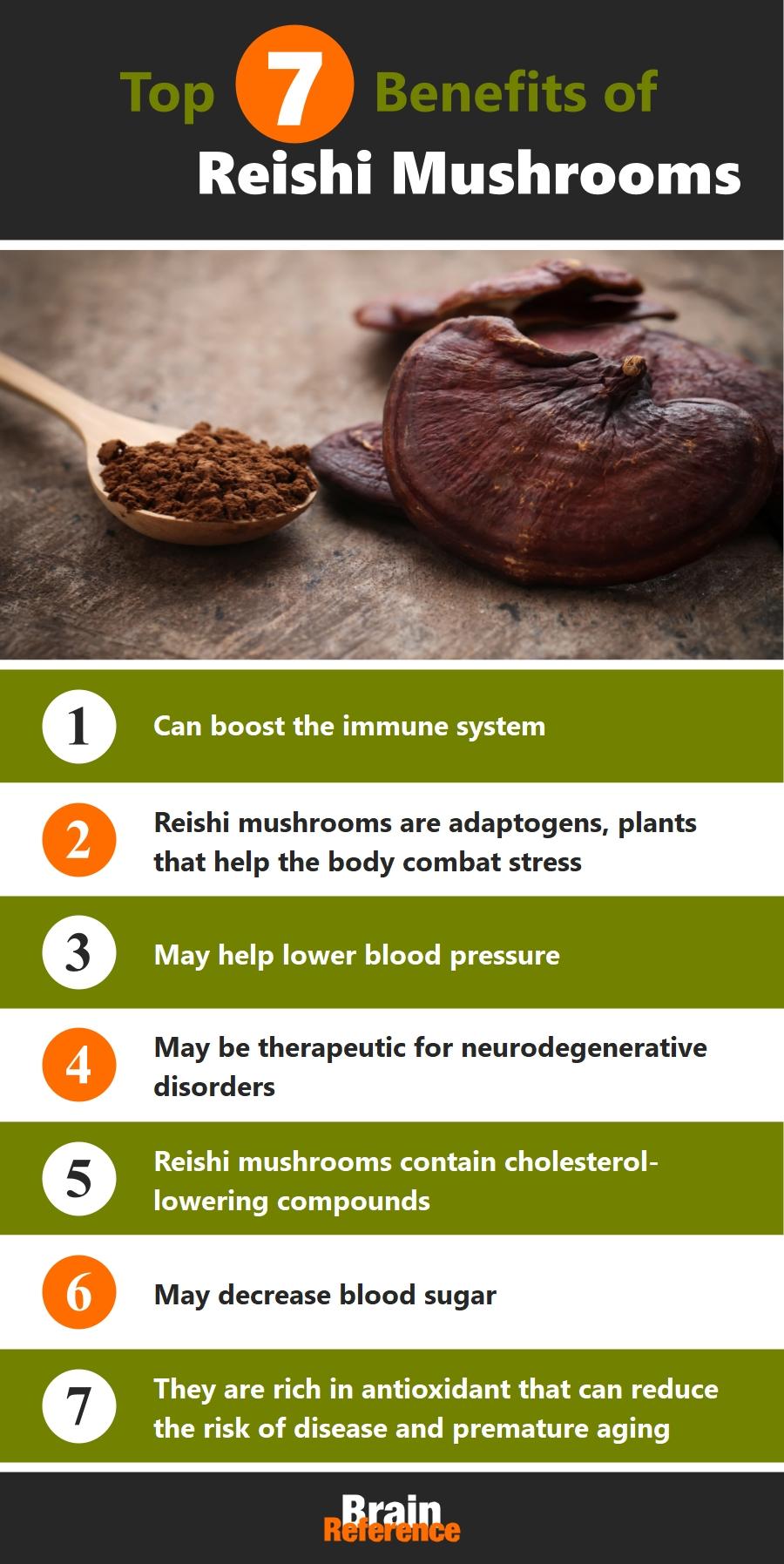 Genius-Mushrooms-The-Genius-Brand-Reishi-Mushroom-Benefits