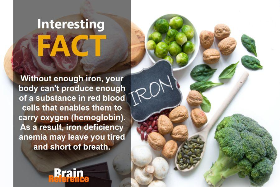 Geritol-Liquid-MEDA-Pharmaceuticals-Iron-Facts
